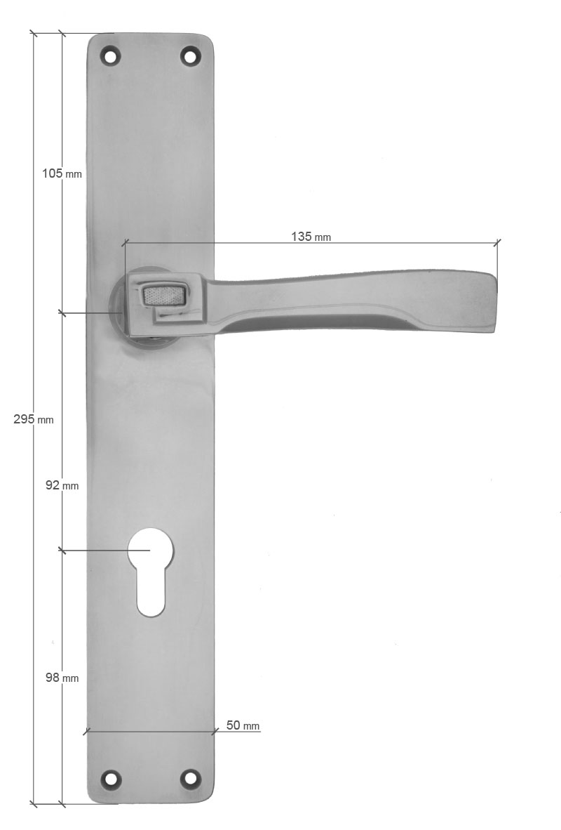 Scale drawing of: Door fittings with fixed handle, on the exterior side and moving lever, on the interior side, , material:, massive brass, , available with different finishes, , including:, spindle and screws, , dimensions:, length plate lever 295 mm, length plate PZ 110 mm, length plate handhold 275 mm, width plate lever 50 mm, width plate PZ 50 mm, width plate handhold 50 mm, length handhold 190 mm, length handle 135 mm,