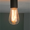 Bulbs with carbon filament in different shapes and sizes as well as simple porcelain socket, also for direct mounting